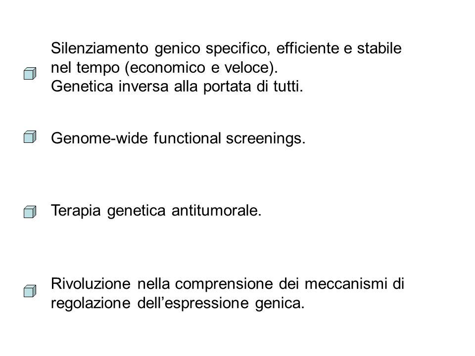 Silenziamento genico specifico, efficiente e stabile nel tempo (economico e veloce).