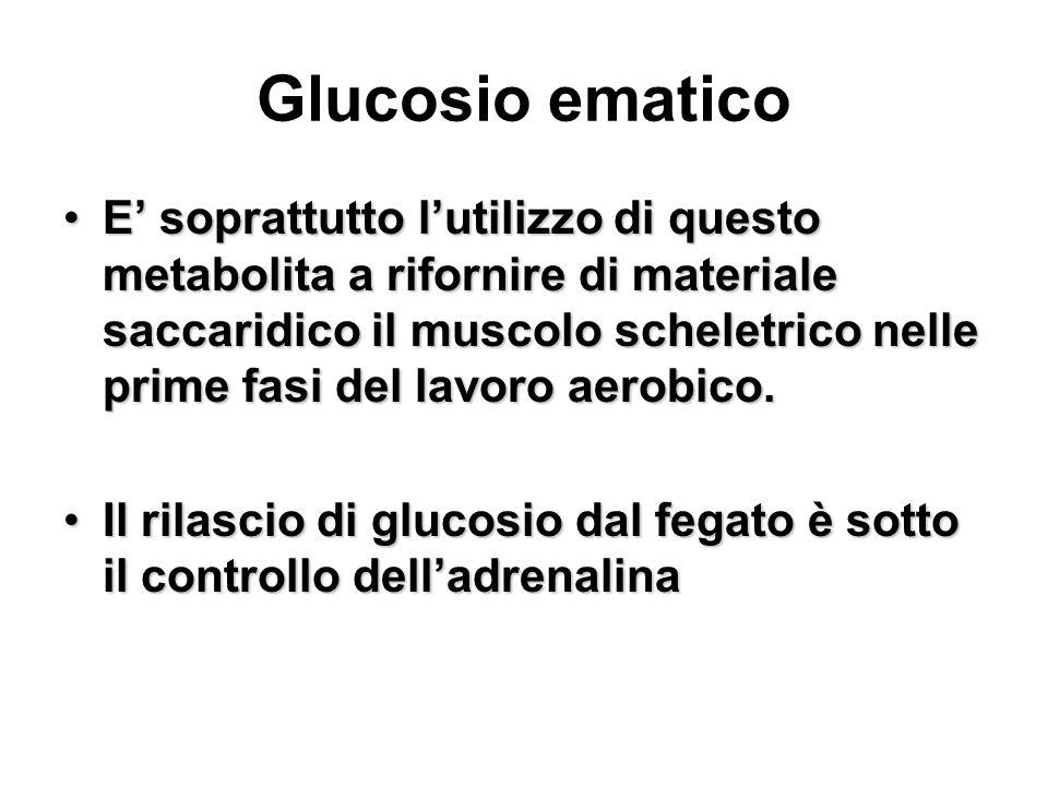 Glucosio ematico