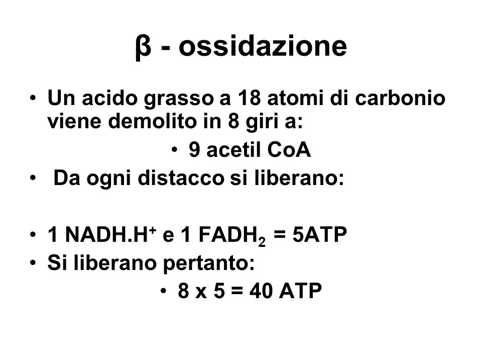 β - ossidazione Un acido grasso a 18 atomi di carbonio viene demolito in 8 giri a: 9 acetil CoA. Da ogni distacco si liberano: