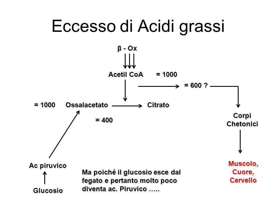 Eccesso di Acidi grassi