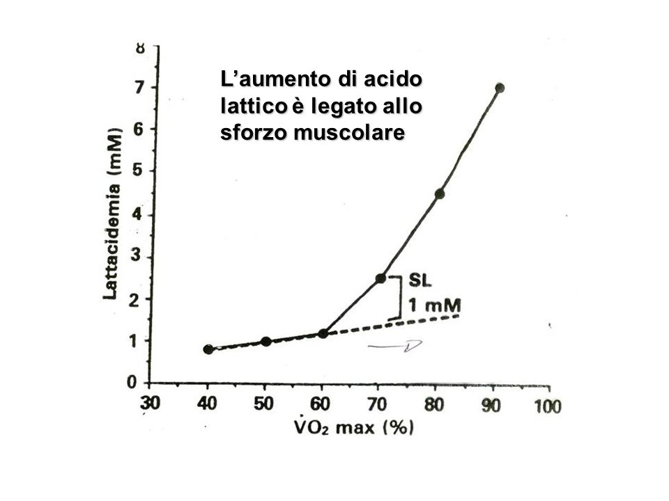 L'aumento di acido lattico è legato allo sforzo muscolare