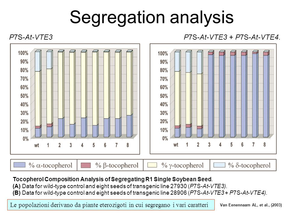 Segregation analysis P7S-At-VTE3 P7S-At-VTE3 + P7S-At-VTE4.