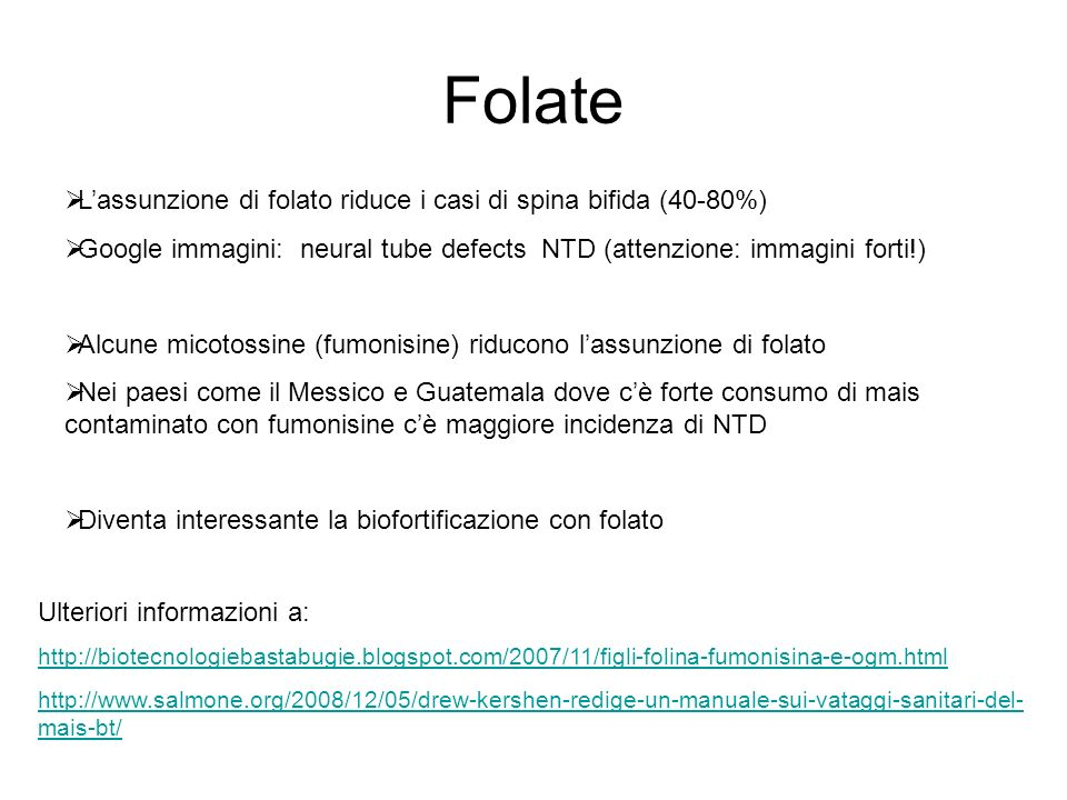 Folate L'assunzione di folato riduce i casi di spina bifida (40-80%)