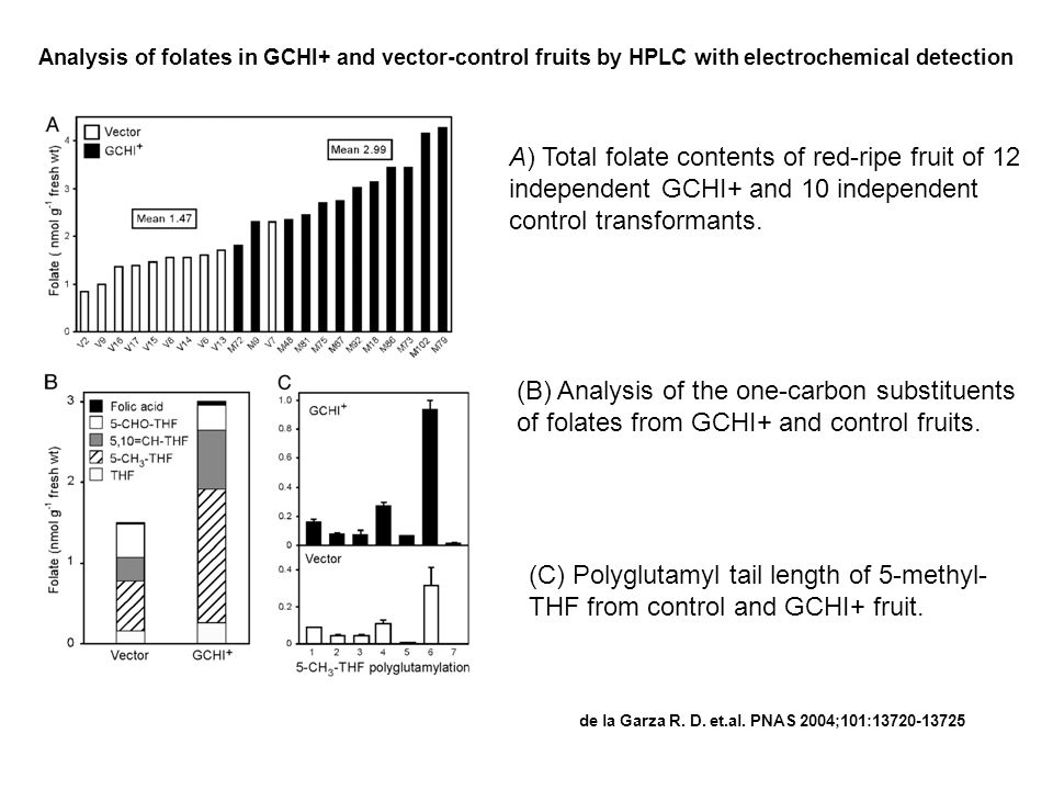 Analysis of folates in GCHI+ and vector-control fruits by HPLC with electrochemical detection