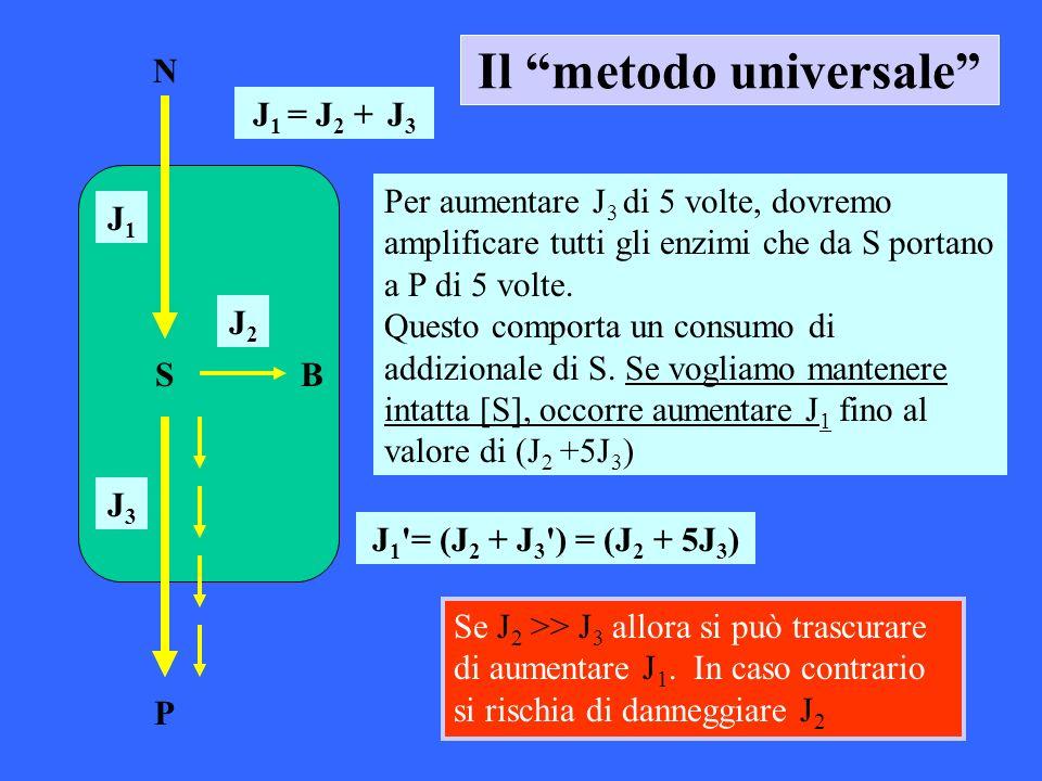 Il metodo universale