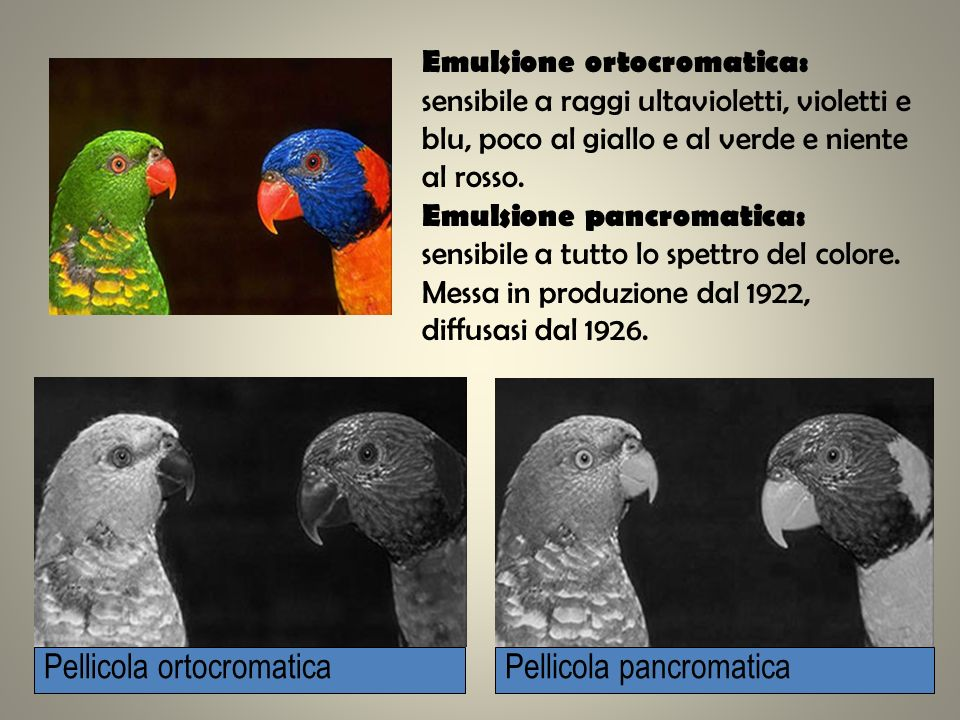 Pellicola ortocromatica Pellicola pancromatica