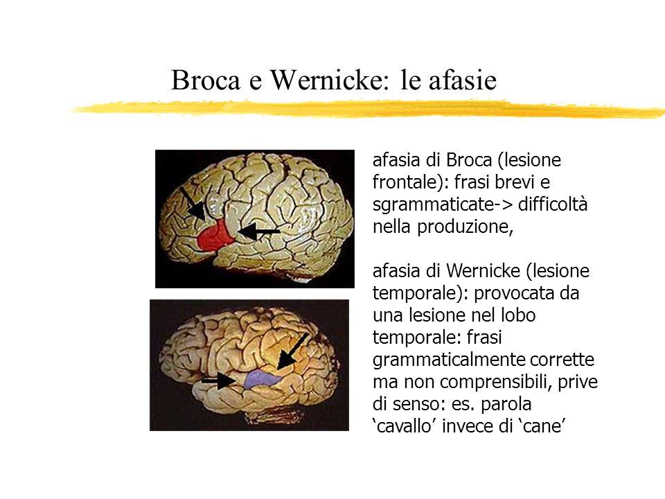 Broca e Wernicke: le afasie