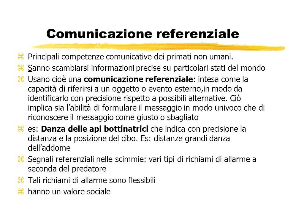Comunicazione referenziale