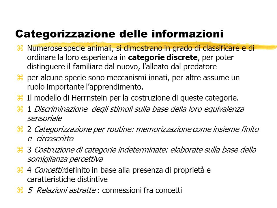 Categorizzazione delle informazioni