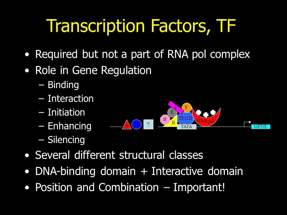 Transcription Factors, TF