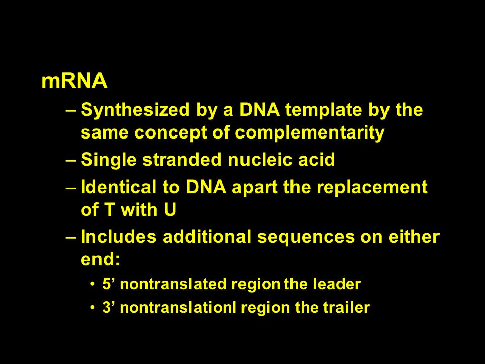 mRNASynthesized by a DNA template by the same concept of complementarity. Single stranded nucleic acid.