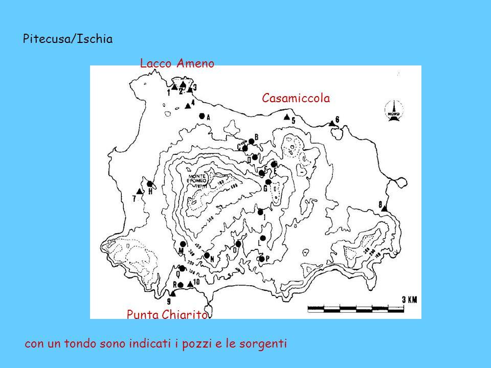con un tondo sono indicati i pozzi e le sorgenti