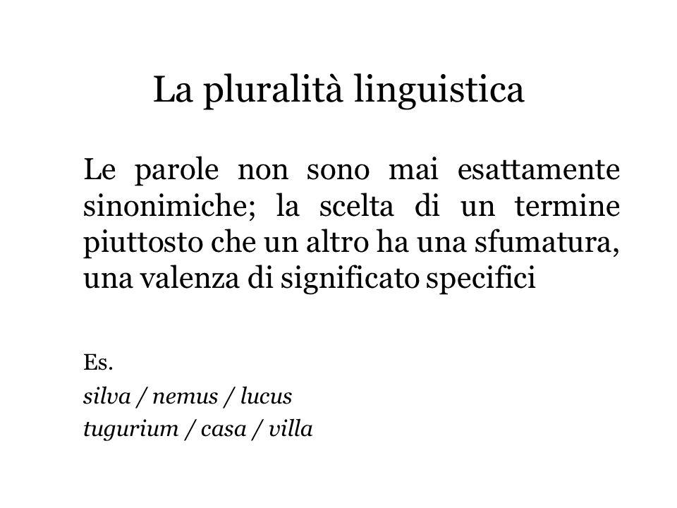 La pluralità linguistica