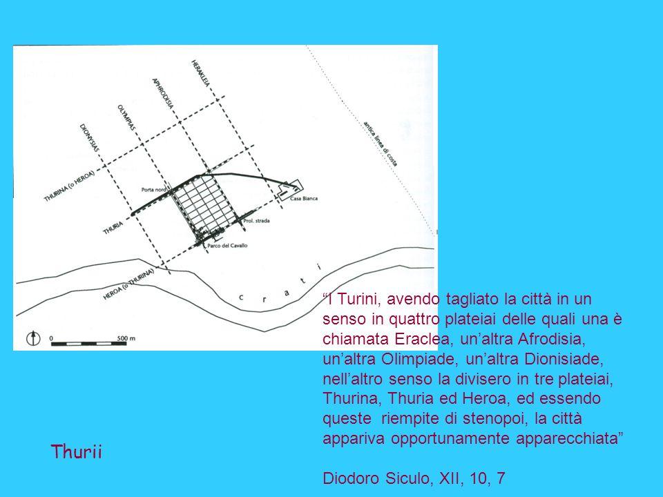 I Turini, avendo tagliato la città in un senso in quattro plateiai delle quali una è chiamata Eraclea, un'altra Afrodisia, un'altra Olimpiade, un'altra Dionisiade, nell'altro senso la divisero in tre plateiai, Thurina, Thuria ed Heroa, ed essendo queste riempite di stenopoi, la città