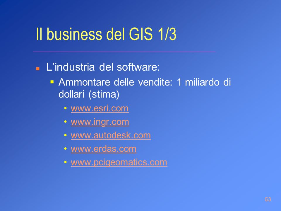 Il business del GIS 1/3 L'industria del software: