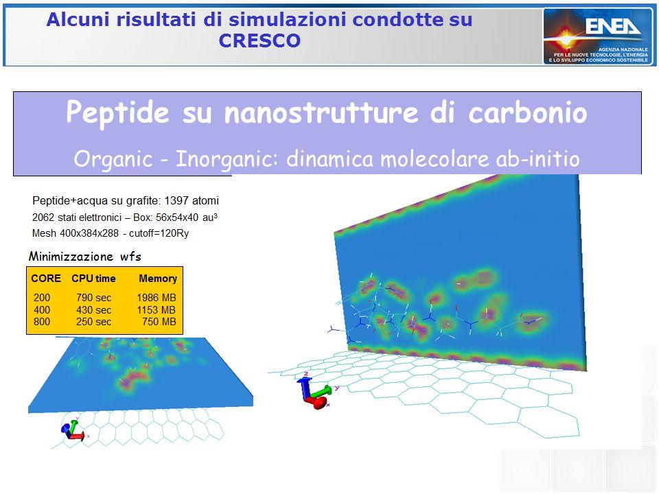 Peptide su nanostrutture di carbonio