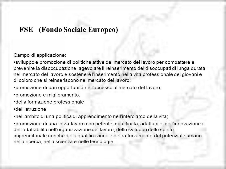 FSE (Fondo Sociale Europeo)
