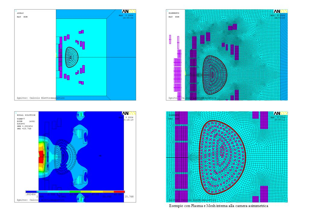Figure 1-4 Esempio con Plasma e Mesh interna alla camera asimmetrica