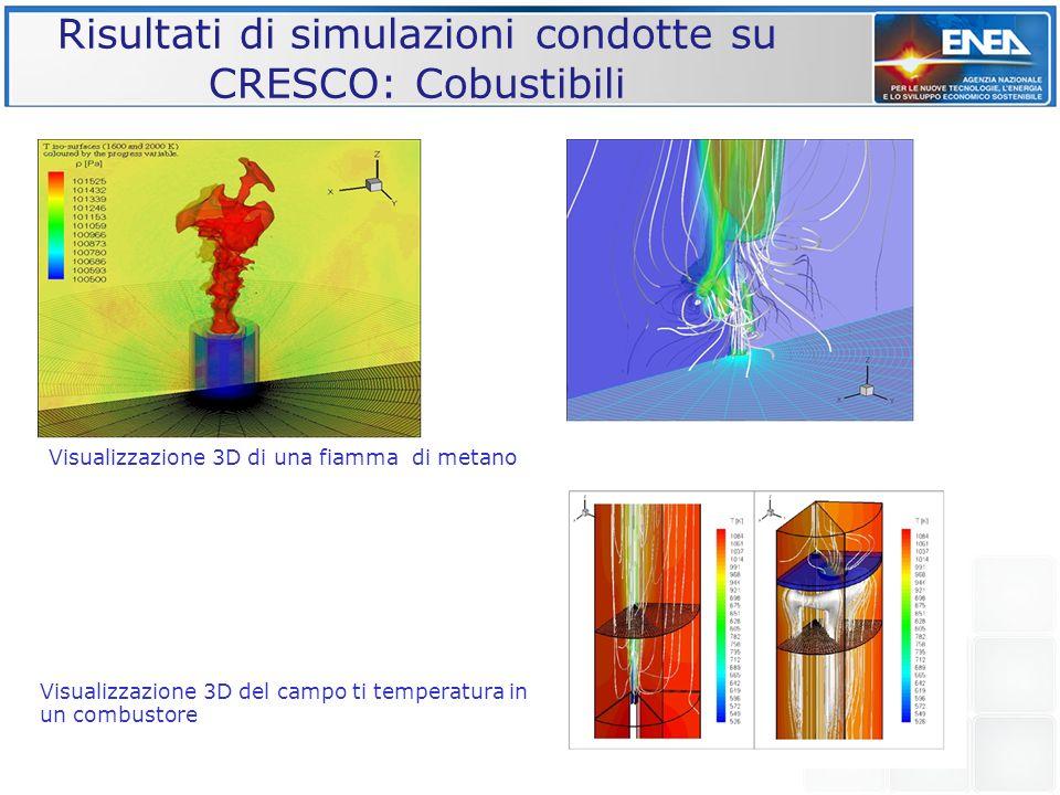 Risultati di simulazioni condotte su CRESCO: Cobustibili