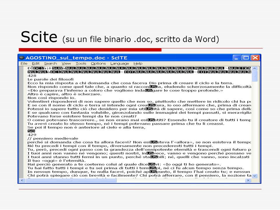 Scite (su un file binario .doc, scritto da Word)