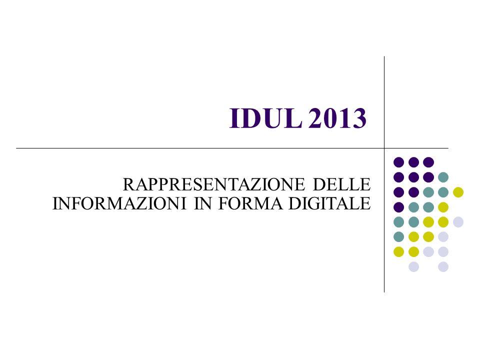 IDUL 2013 RAPPRESENTAZIONE DELLE INFORMAZIONI IN FORMA DIGITALE 1