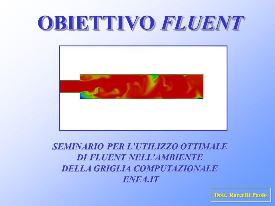 OBIETTIVO FLUENT SEMINARIO PER L'UTILIZZO OTTIMALE
