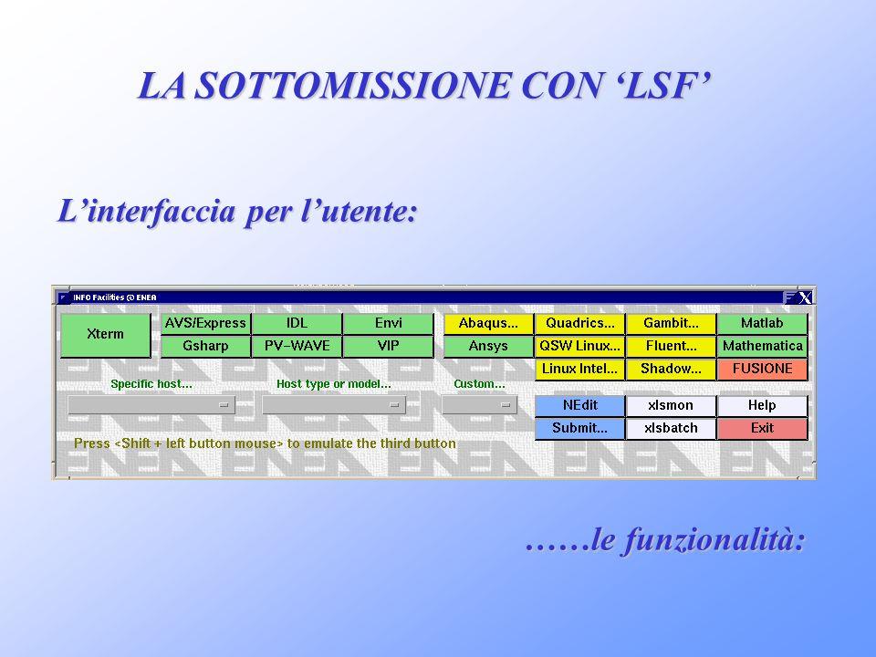 LA SOTTOMISSIONE CON 'LSF' L'interfaccia per l'utente: