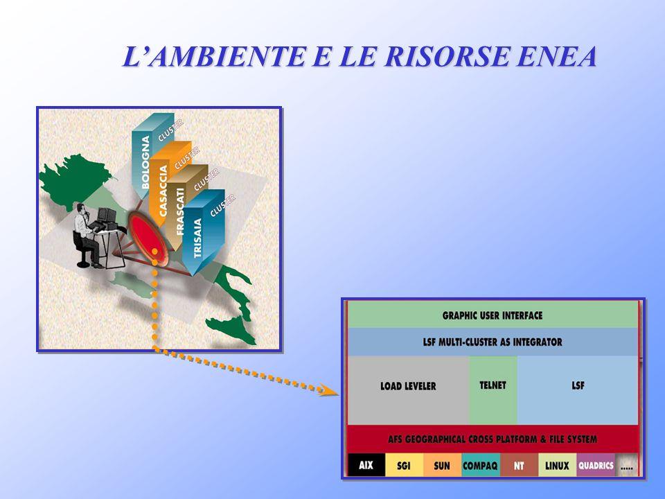 L'AMBIENTE E LE RISORSE ENEA
