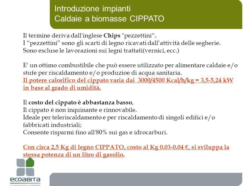 Introduzione impianti Caldaie a biomasse CIPPATO