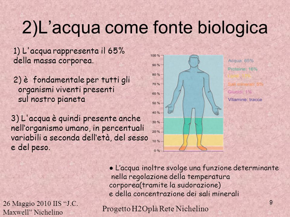 2)L'acqua come fonte biologica