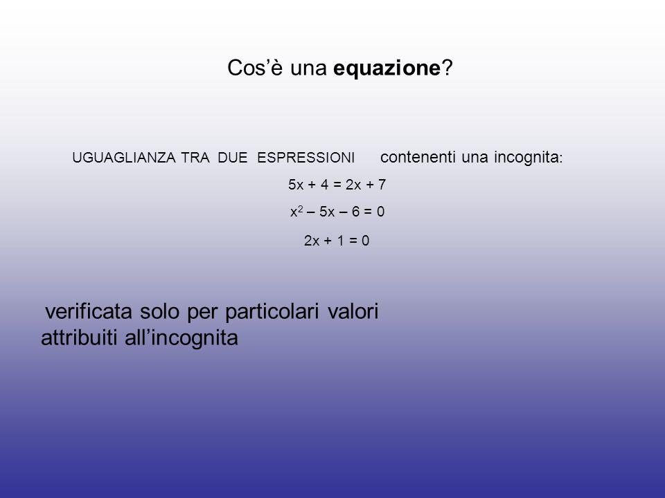 Cos'è una equazione verificata solo per particolari valori attribuiti all'incognita.