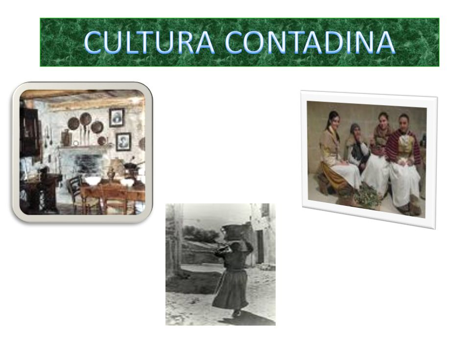 CULTURA CONTADINA
