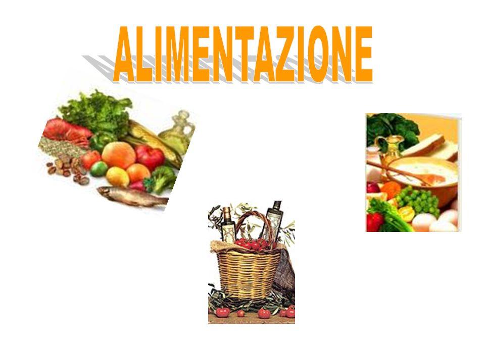 ALIMENTAZIONE 4