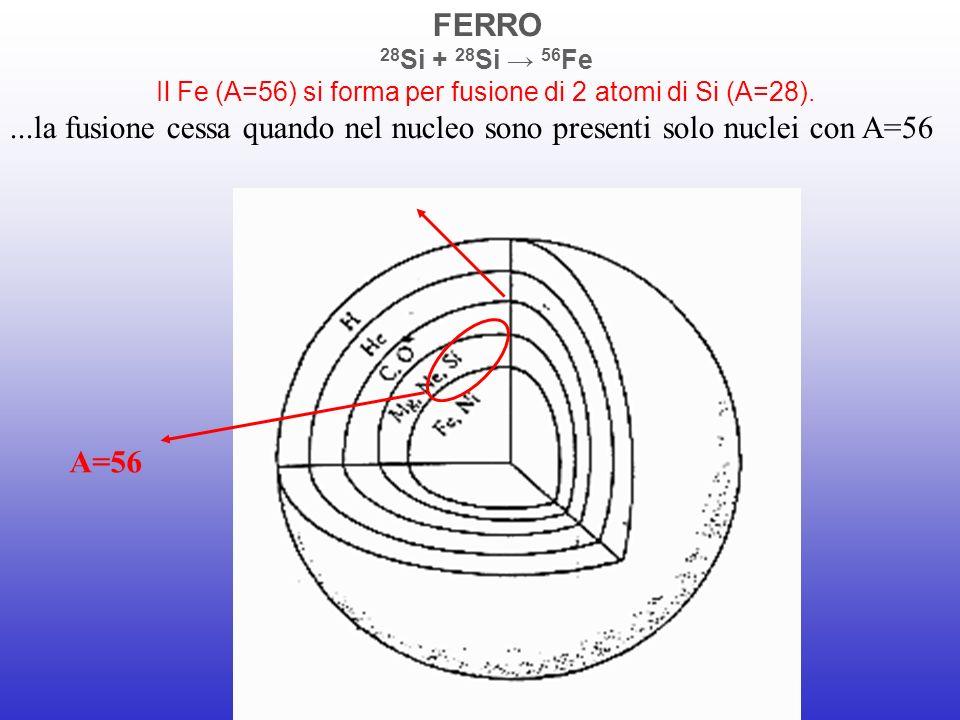 Il Fe (A=56) si forma per fusione di 2 atomi di Si (A=28).
