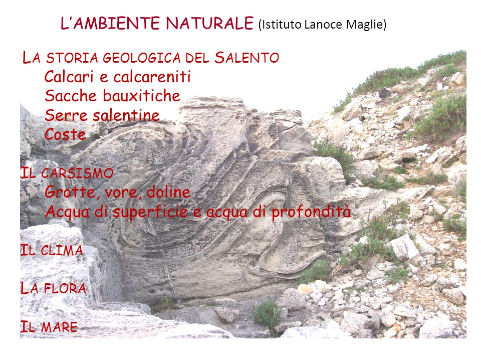 L'AMBIENTE NATURALE (Istituto Lanoce Maglie)