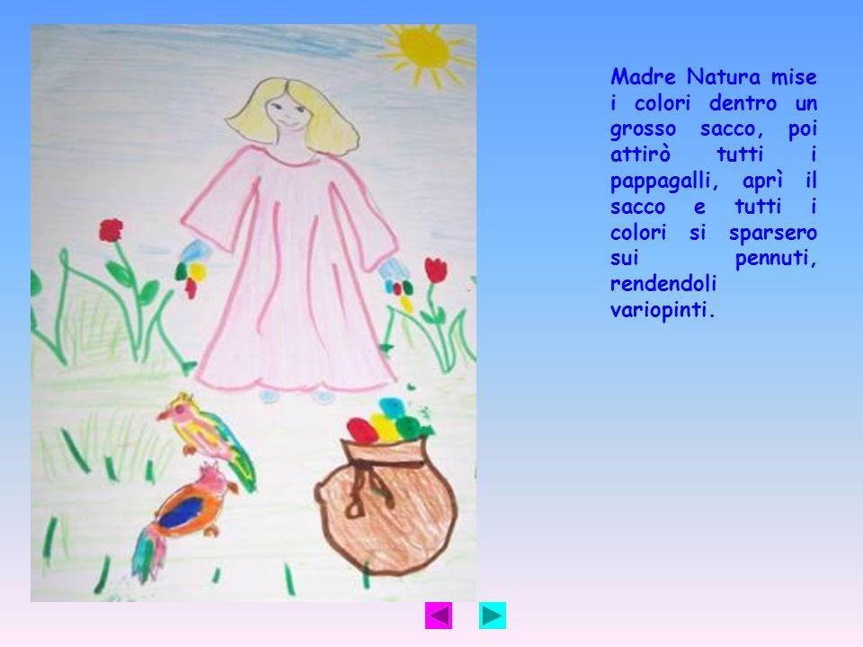 Madre Natura mise i colori dentro un grosso sacco, poi attirò tutti i pappagalli, aprì il sacco e tutti i colori si sparsero sui pennuti, rendendoli variopinti.