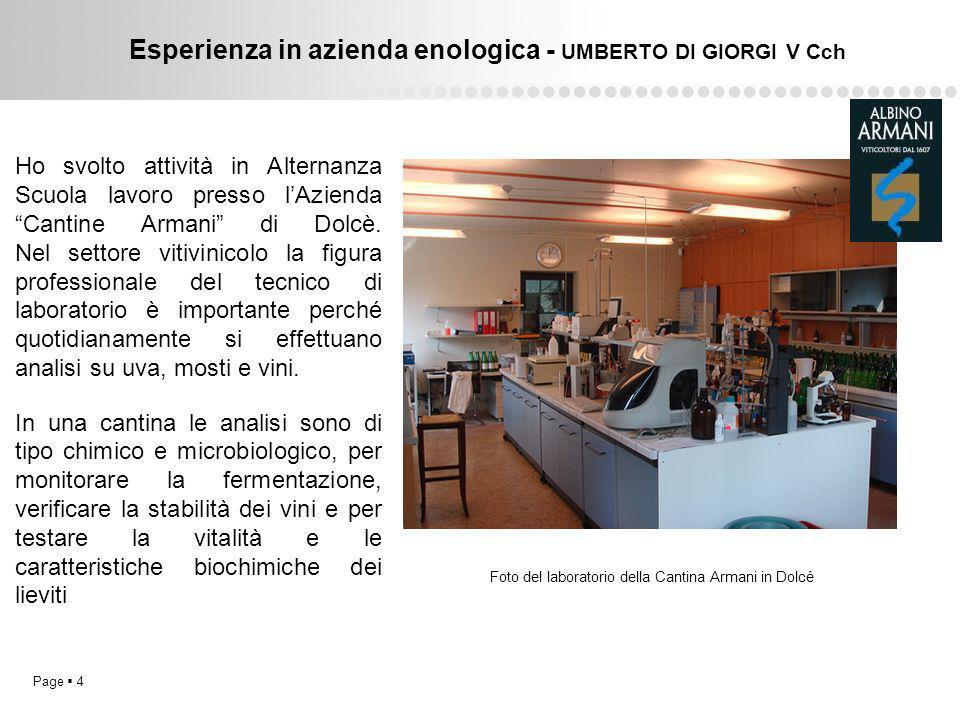 Esperienza in azienda enologica - UMBERTO DI GIORGI V Cch