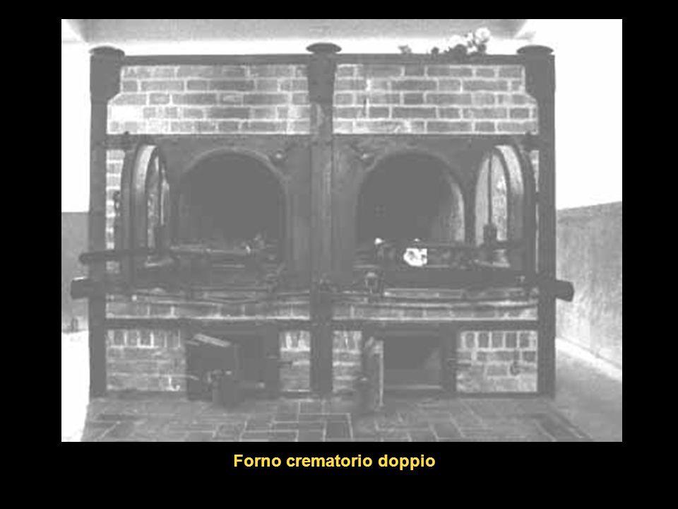 Forno crematorio doppio