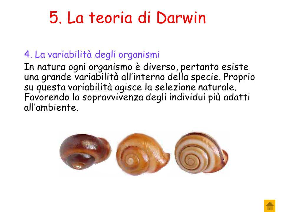 5. La teoria di Darwin 4. La variabilità degli organismi