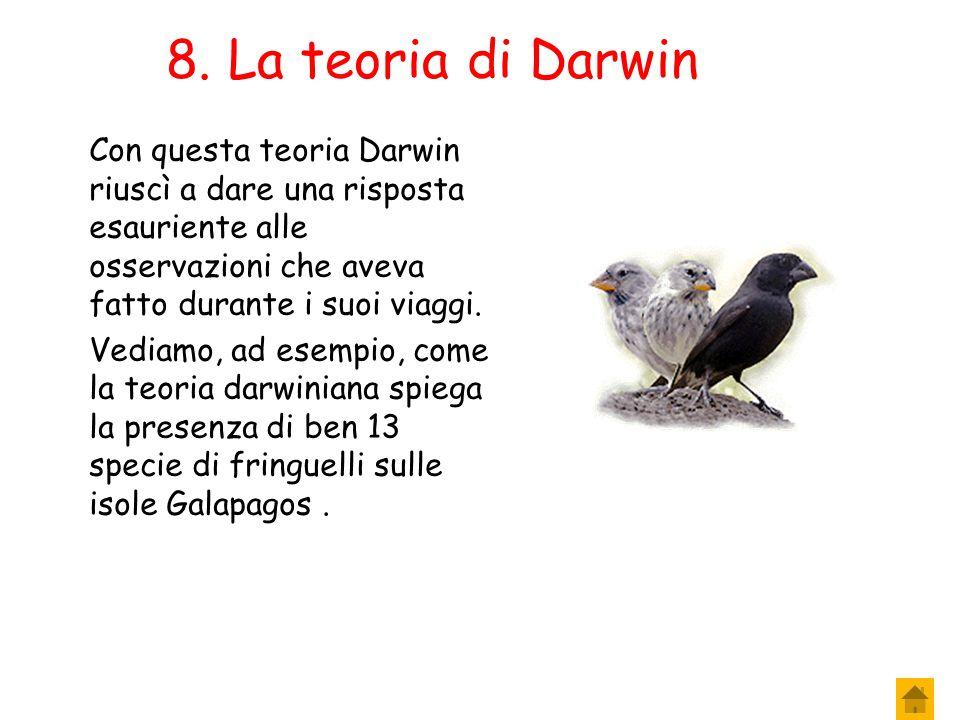 8. La teoria di Darwin Con questa teoria Darwin riuscì a dare una risposta esauriente alle osservazioni che aveva fatto durante i suoi viaggi.