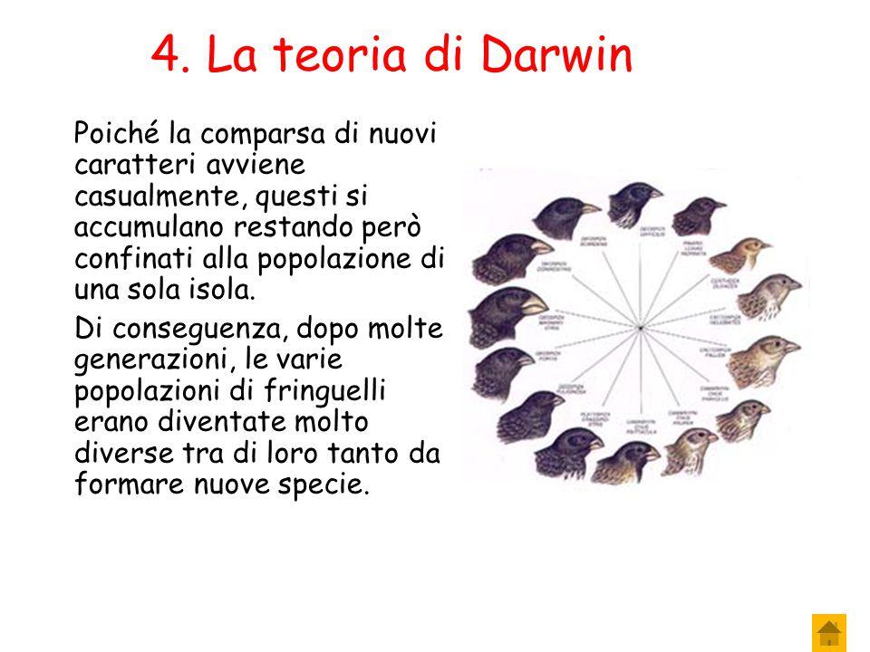 4. La teoria di Darwin