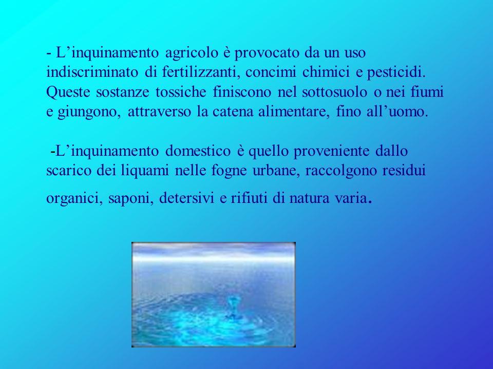 - L'inquinamento agricolo è provocato da un uso indiscriminato di fertilizzanti, concimi chimici e pesticidi.