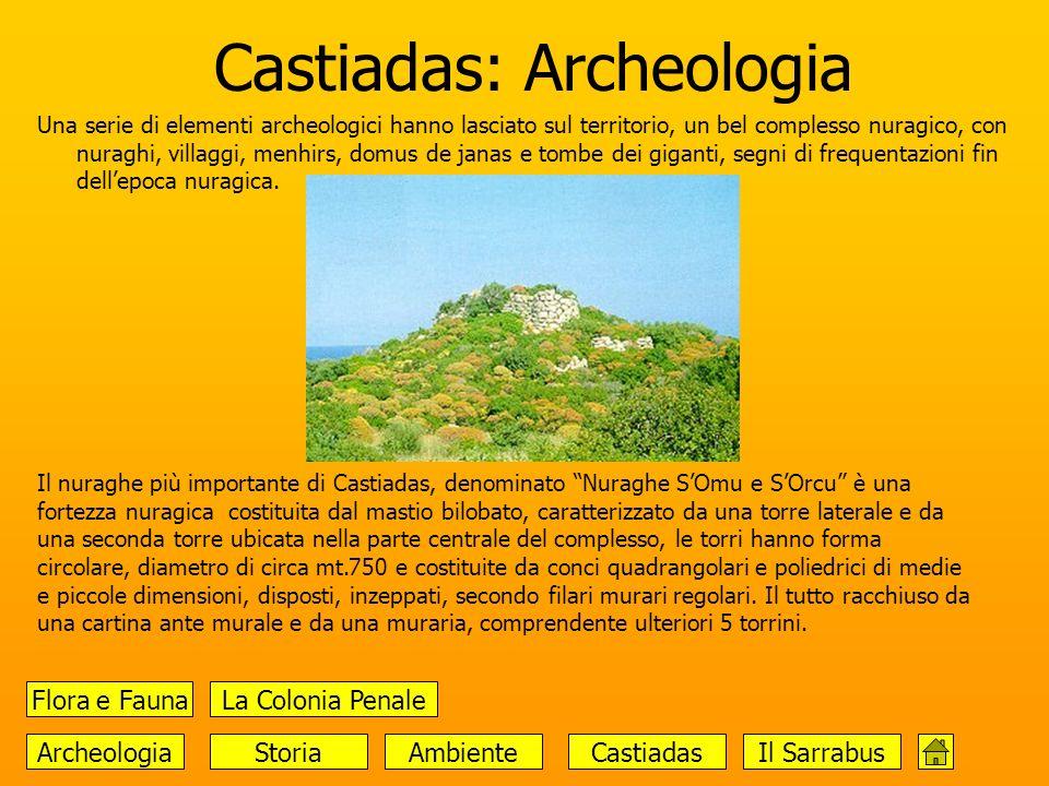 Castiadas: Archeologia