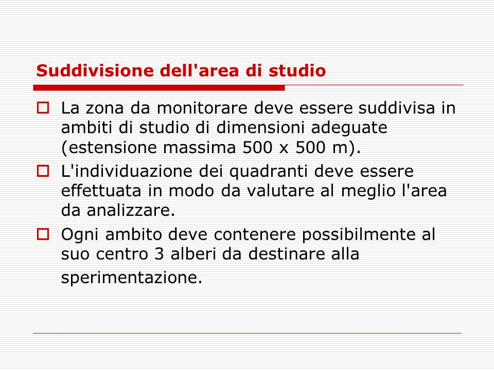 Suddivisione dell area di studio