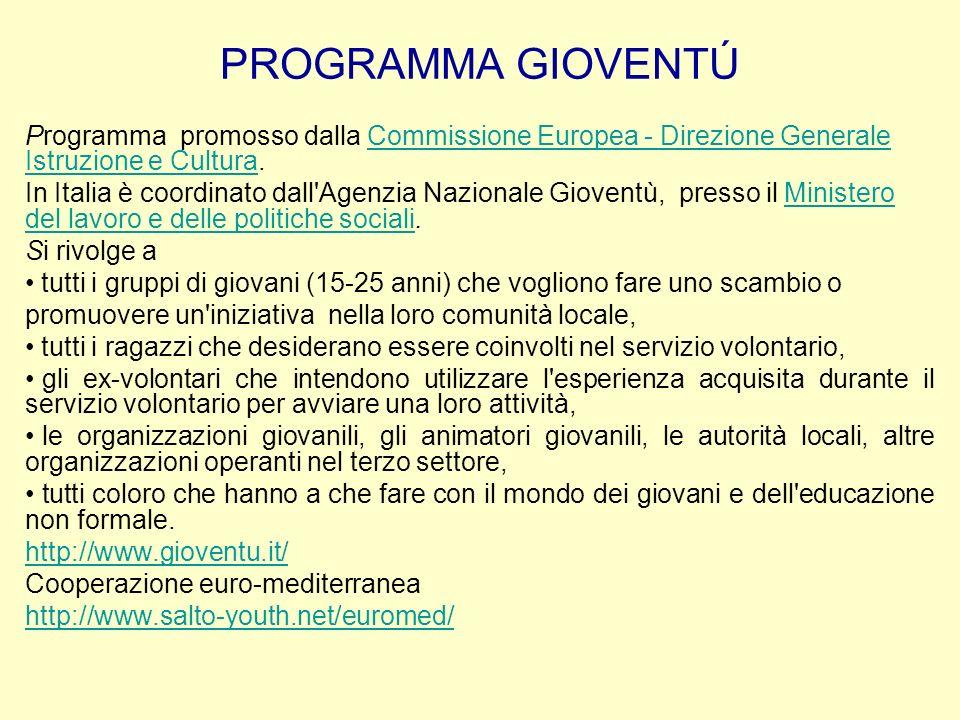 PROGRAMMA GIOVENTÚProgramma promosso dalla Commissione Europea - Direzione Generale Istruzione e Cultura.