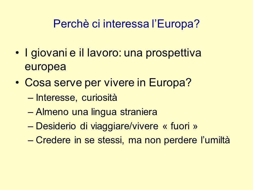Perchè ci interessa l'Europa