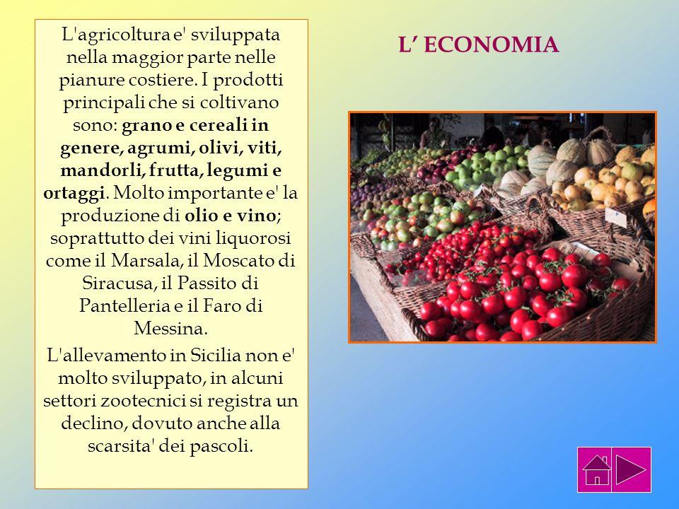 L agricoltura e sviluppata nella maggior parte nelle pianure costiere