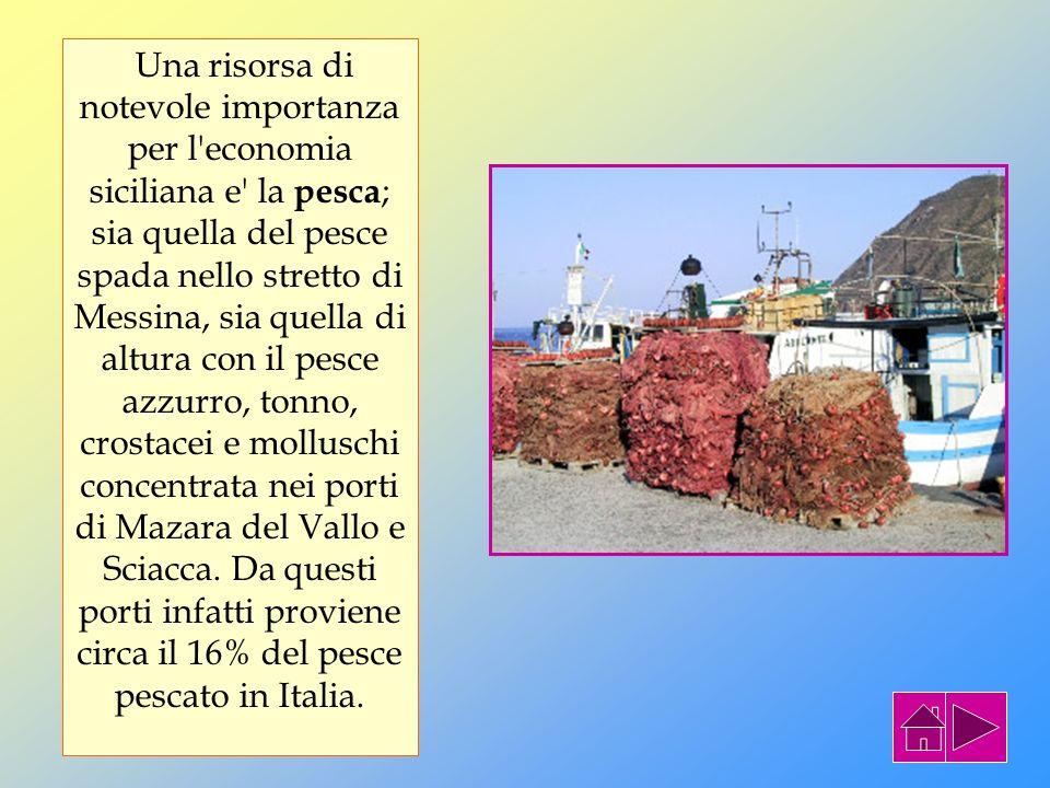 Una risorsa di notevole importanza per l economia siciliana e la pesca; sia quella del pesce spada nello stretto di Messina, sia quella di altura con il pesce azzurro, tonno, crostacei e molluschi concentrata nei porti di Mazara del Vallo e Sciacca. Da questi porti infatti proviene circa il 16% del pesce pescato in Italia.