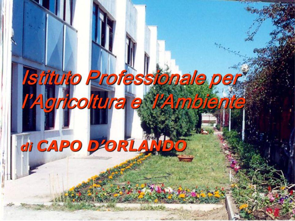 Istituto Professionale per l'Agricoltura e l'Ambiente