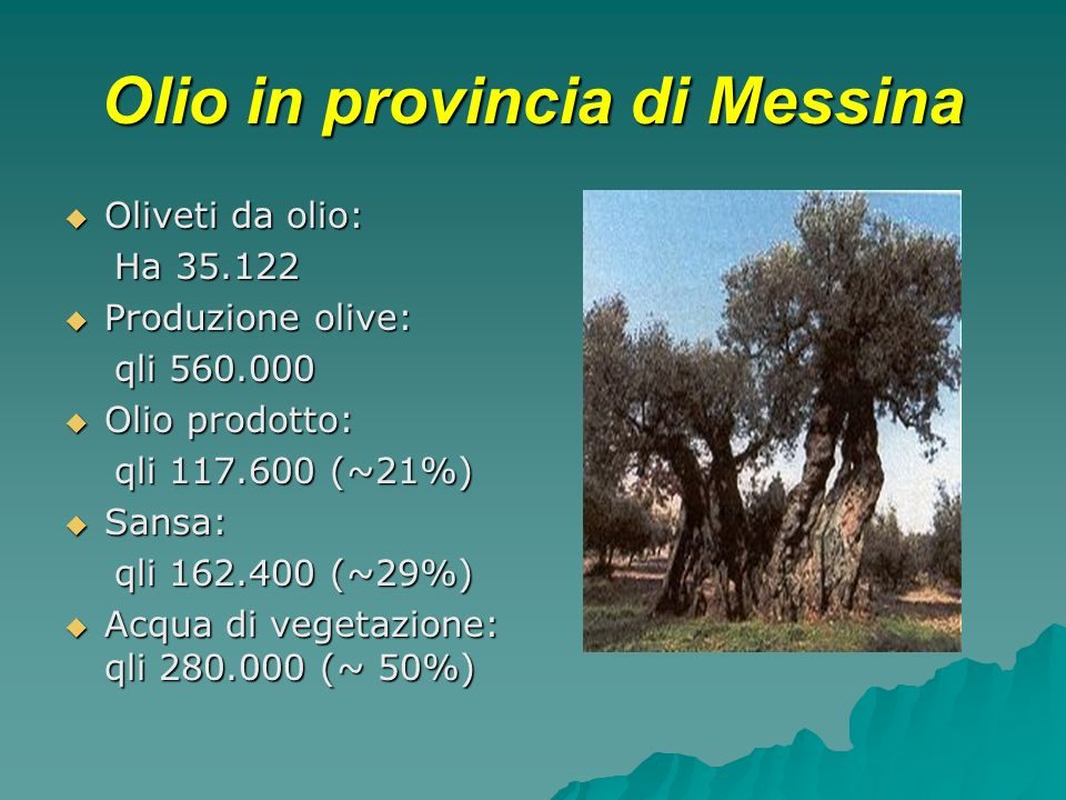 Olio in provincia di Messina